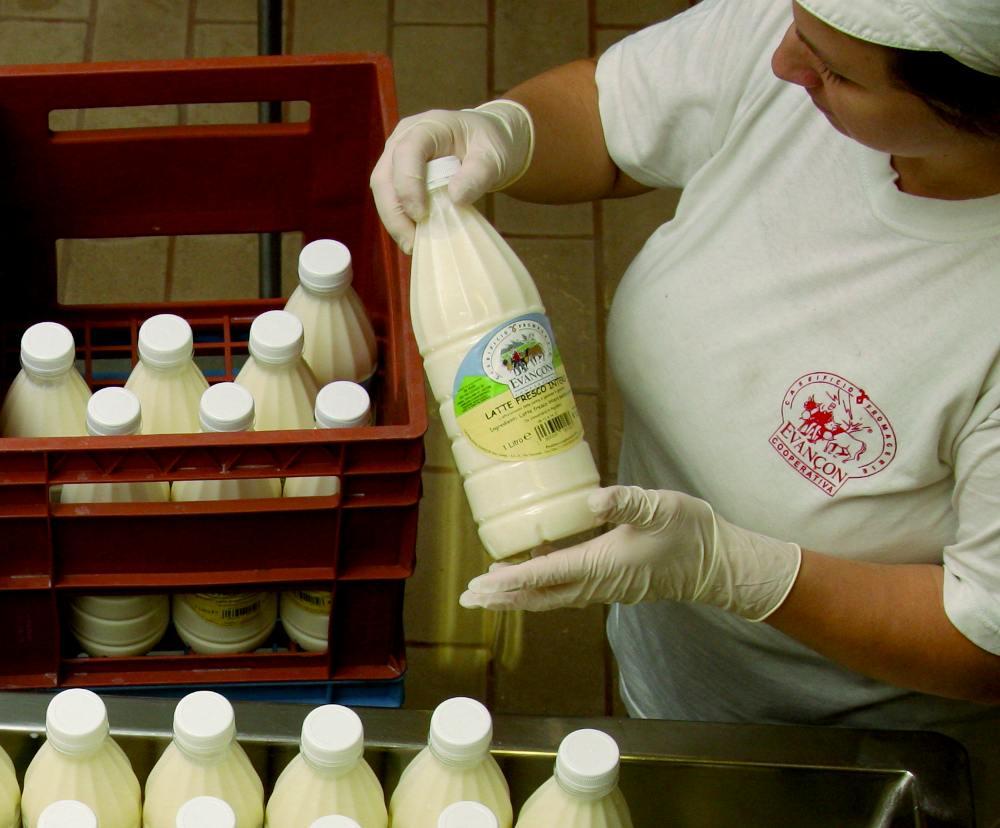 Latte e formaggi prodotti artigianalmente