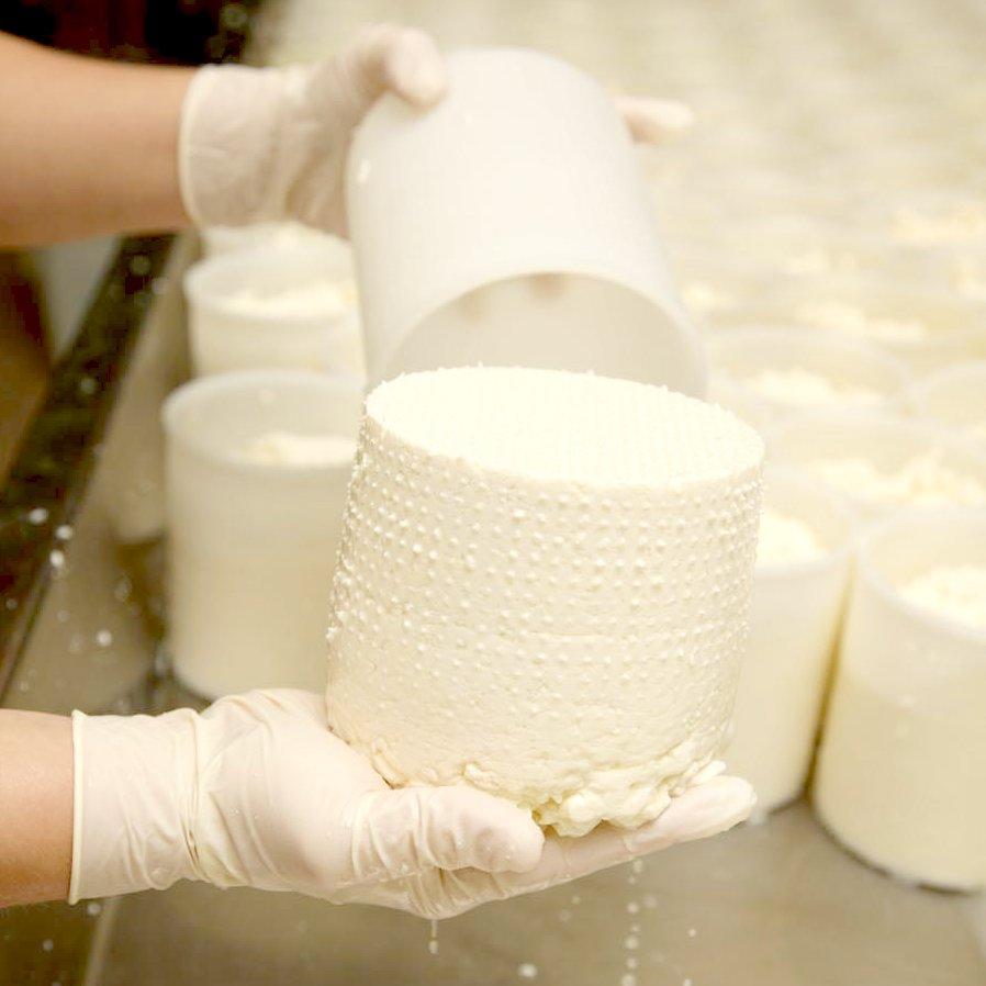 Formatura formaggi