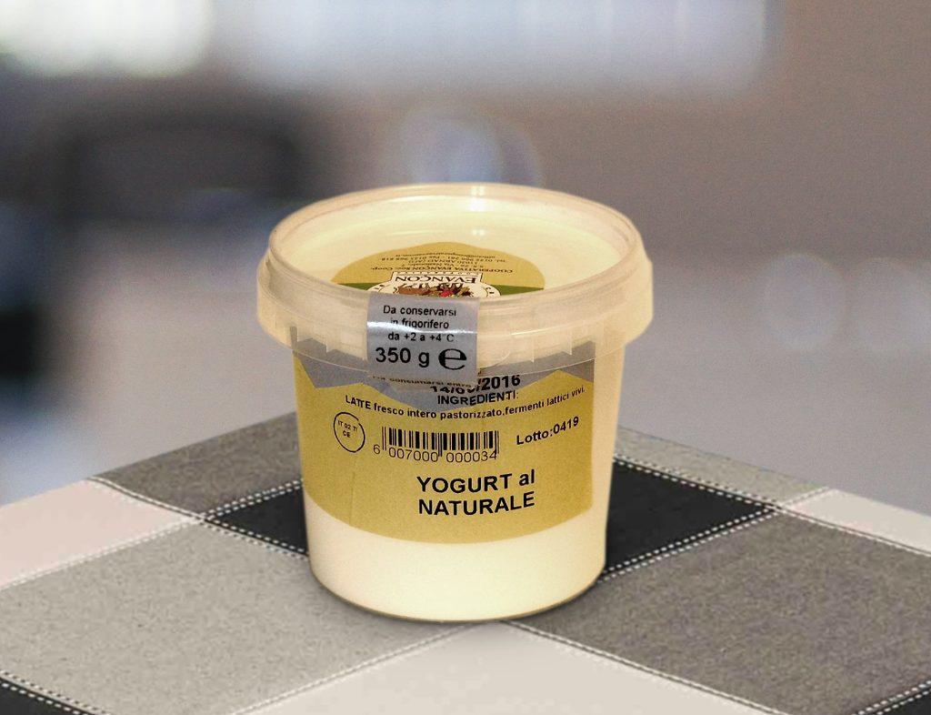 Yogurt 350g